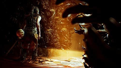 hellblade senuas sacrificio playstation 4