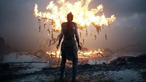 hellblade: senuas sacrificio (ps4)