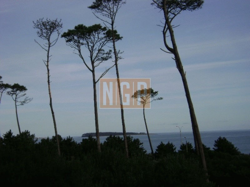 hermosa cabaña en pinares a pocos metros del mar-ref:18631