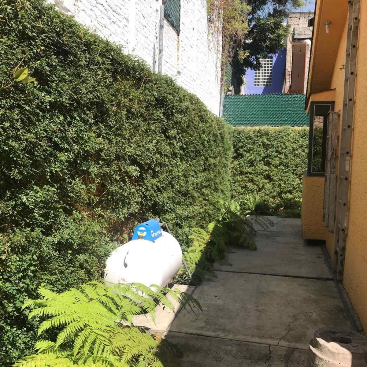 hermosa casa en coyoacán