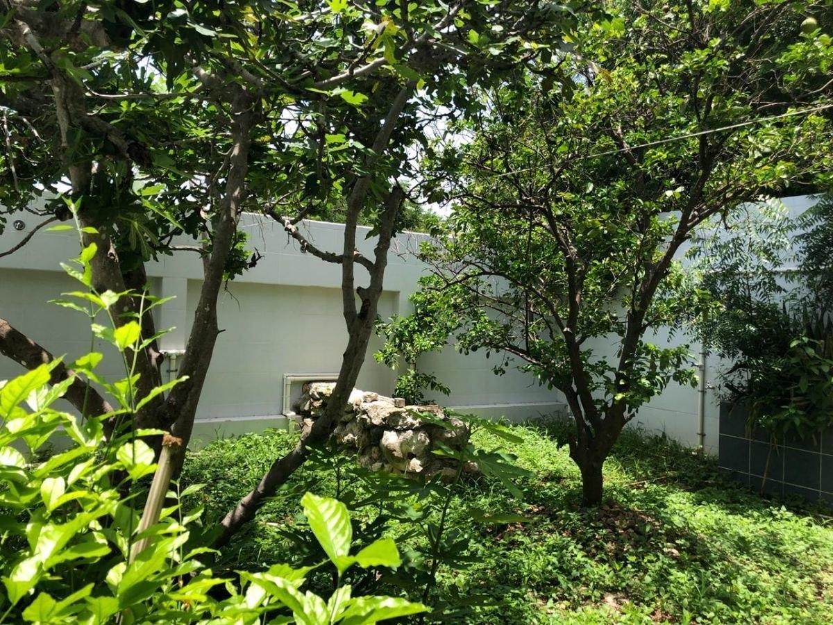 hermosa casa en venta en francisco de montejo ii