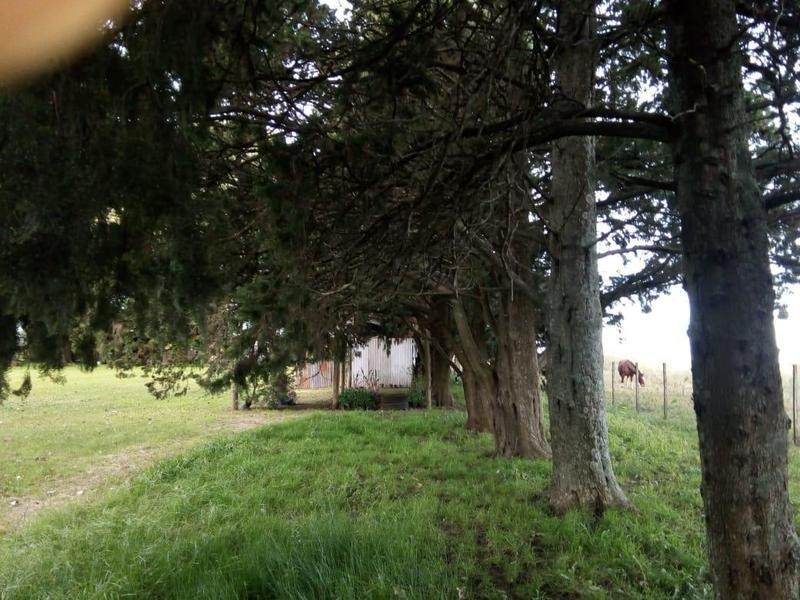 hermosa chacra 6 hectareas. barrio solis - exatacion de la cruz