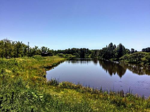 hermosa chacra de 2,95 has con costa sobre canal a 150 mts del arroyo martínez.