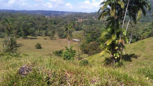 hermosa finca de 100 hectareas