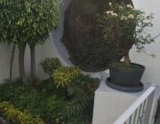 hermosa residencia jardines de satélite, vigilancia