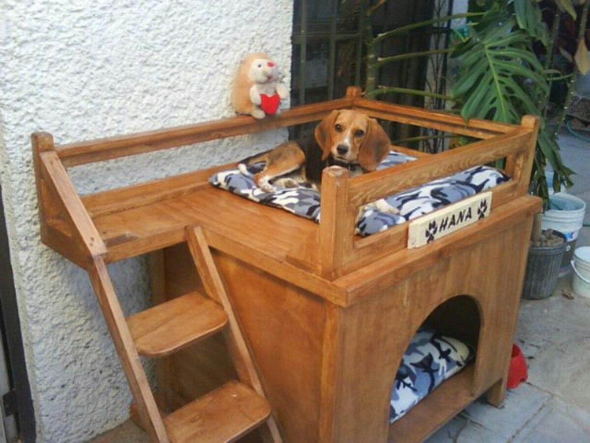 Hermosas casas con terraza para perros peque os y - Como hacer caseta de madera ...