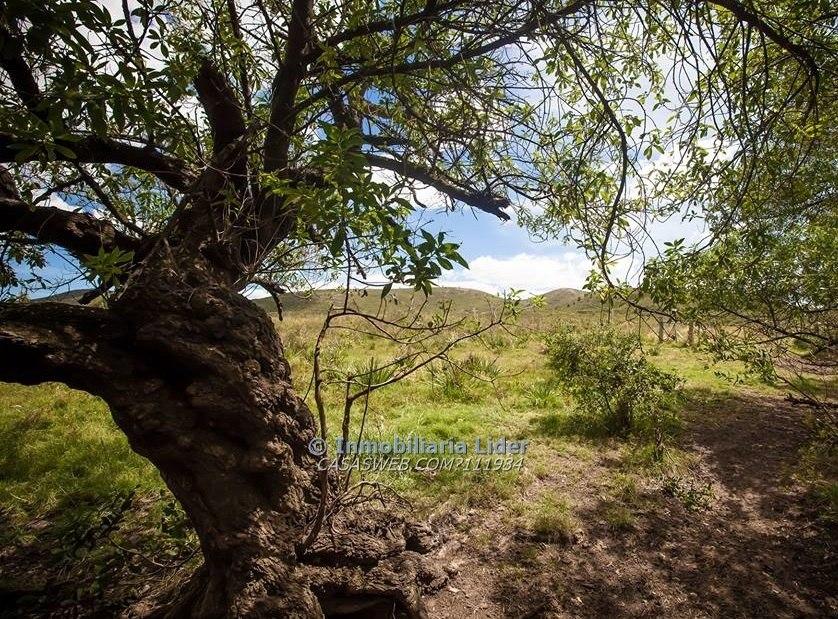 hermosas chacras de 5 hectáreas en la sierra de las ánimas