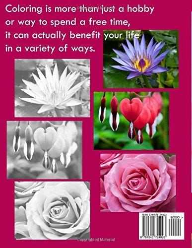 Hermosas Flores En Escala De Grises Libros Para Colorear En