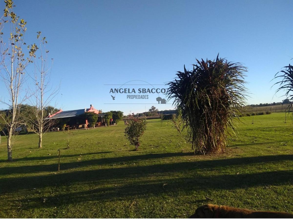 hermoso campo de 5 hectáreas