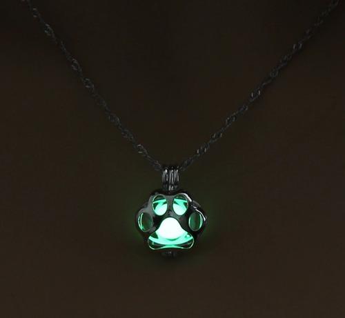 hermoso collar brilla oscuridad huella perro luminiscente