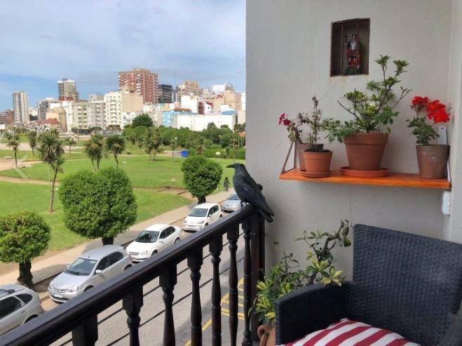 hermoso depto de 3 amb frente a plaza españa y vista al mar