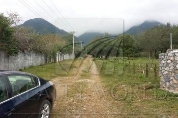 hermoso terreno casi plano,rodeado de quintas y lleno de árboles a 1 km de la carretera santiago -cola de caballo(el arc