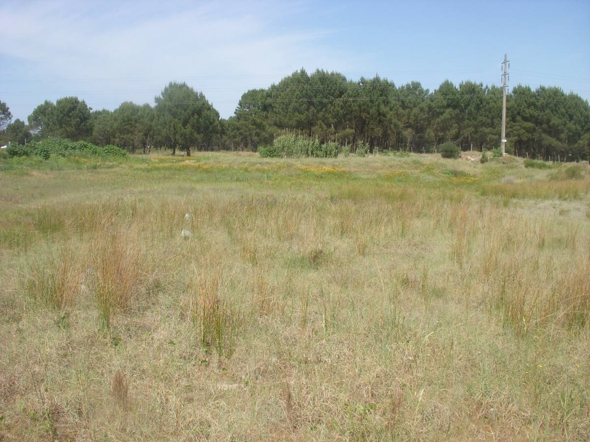 hermoso terreno de 5.000 m2! al norte de av. giannattasio