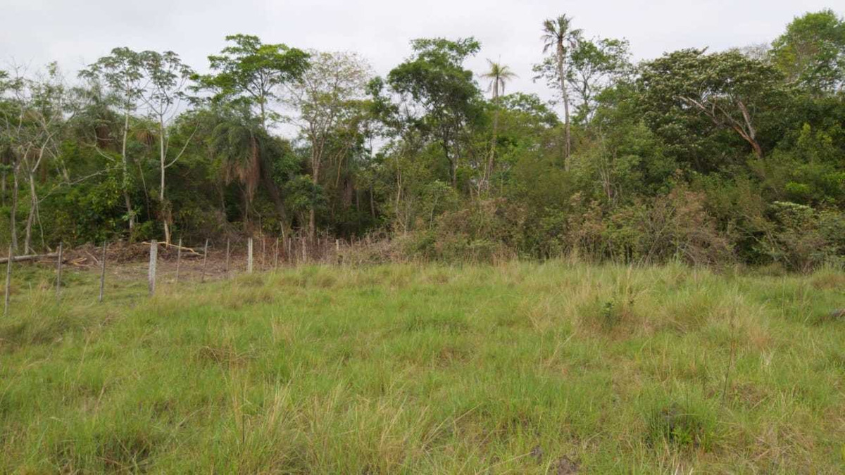 hermoso terreno de 7 hectareas en limpio