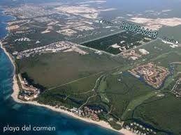 hermoso terreno en la naturaleza de selvamar,playa del carmen p2499