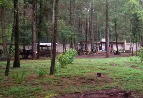 hermoso terreno plano rodeado de bosque, ideal para rancho.