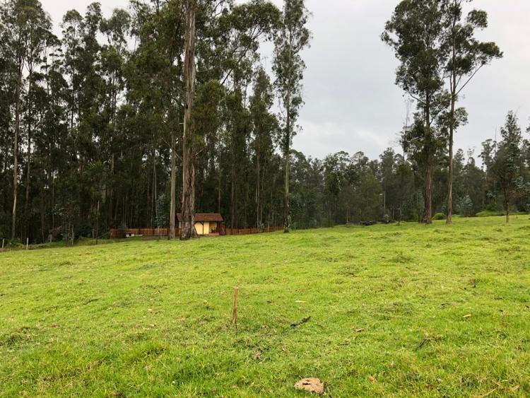 hermoso terreno preurbanizado, el refugio,vía colibrí-píntag