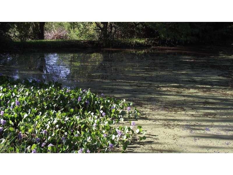hermoso terreno sobre el río chico de nono