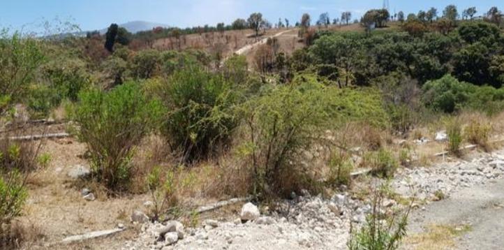 hermoso terreno/lote en valle de san patricio