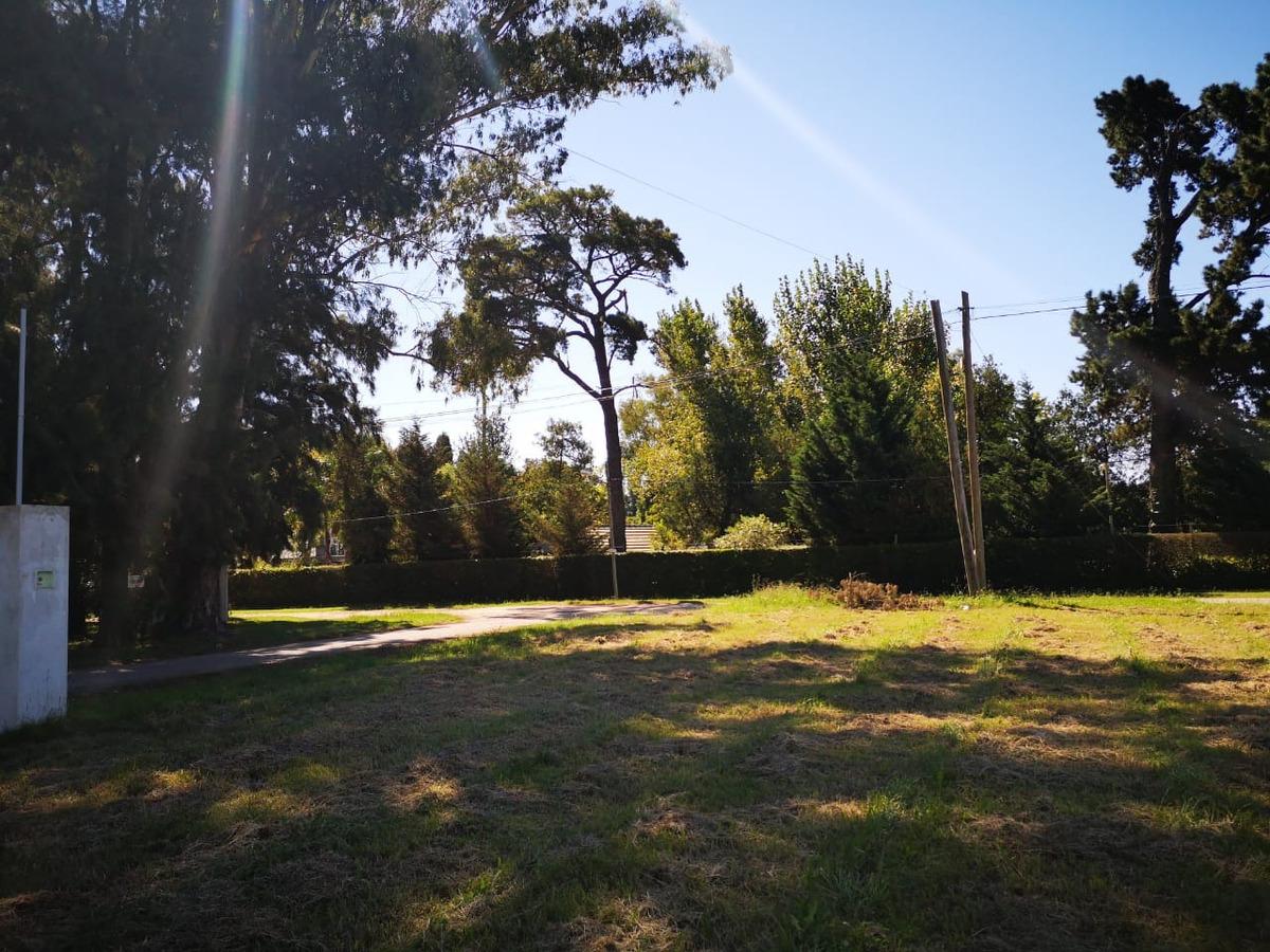 hermoso y excepcional lote terreno en el pato. barrio parque