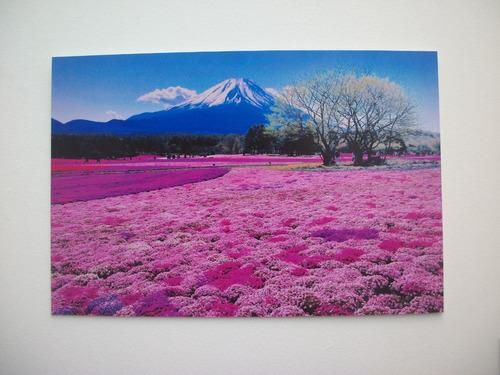hermosos cuadros paisajes