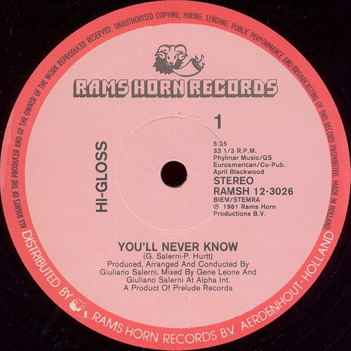 hi-gloss - you'll never know (extended) vinilo 12 pulgadas
