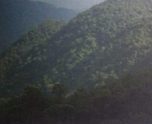 hidalgo 800 hectareas ideal para cafe, frutas, grano, etc. $30'000,000