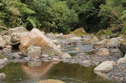 hidrobiotika servicios ambientales