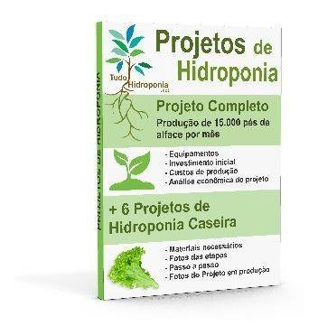 hidroponia é vida aprenda do 0 como ser auto suficiente