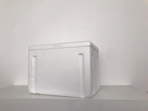 hielera de unicel diferentes tamaños y gel refrigerante
