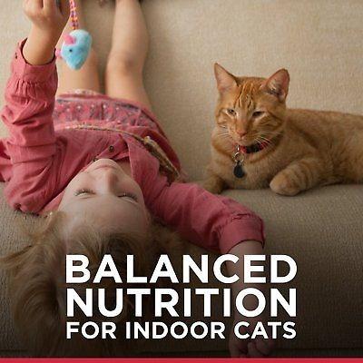 hill \ 's science diet adulto interior gato sabroso pollo e