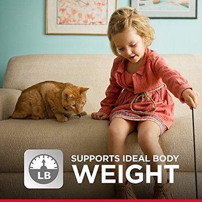 hill \ 's science diet comida húmeda para gatos, sabrosa en