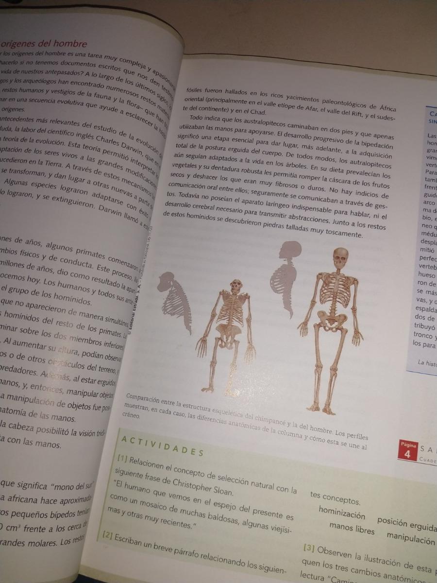 Historia De Prehistoria A La Edad Media Estrada Confluencias 20000