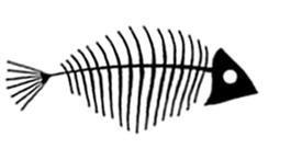 historia de una chica que se enamoró de un pez daniela pasik