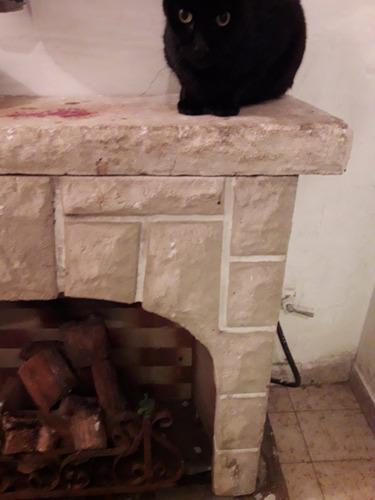 hogar de piedra