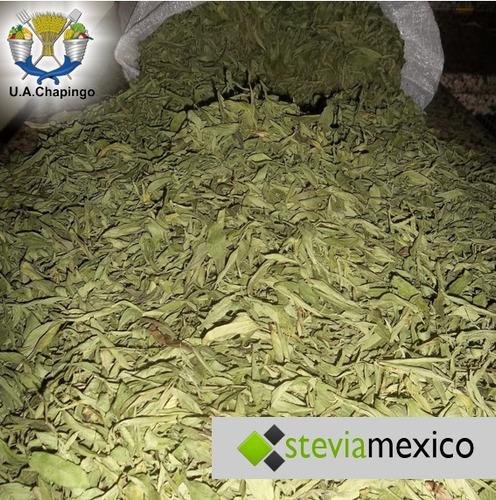 hoja entera de stevia 3 kg