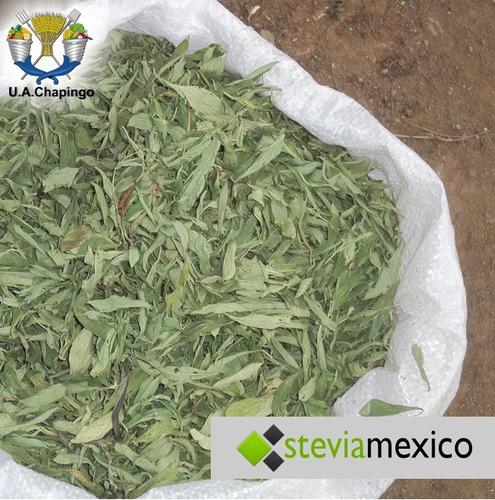 hoja pulverizada de stevia 2 kg.