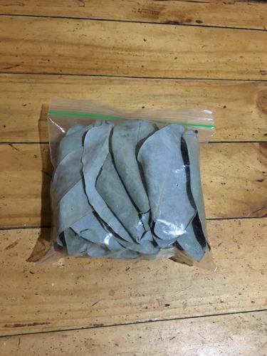 hojas de eucalipto (para infusión)