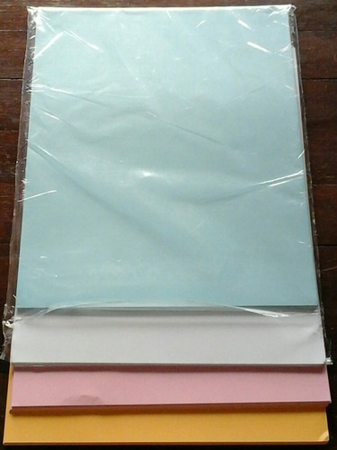 hojas t. carta  de colores  paq. de 100 unidades