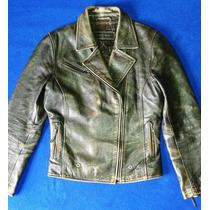 Chaqueta Chevignon Cuero - Colección Harley Davidson.