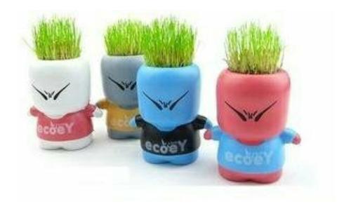 hombrecito planta - hair plant - lopitos x2!!