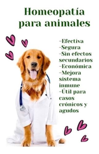 homeopatia para  mascotas