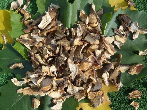hongos portobello y champiñon secos  x 50g