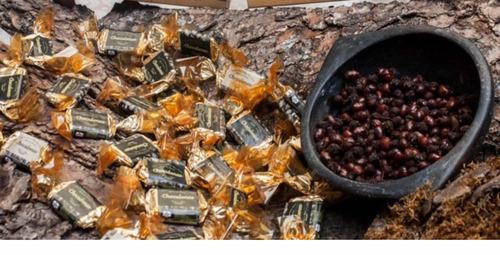 hormigas culonas, dulces, chocolatinas , trufas