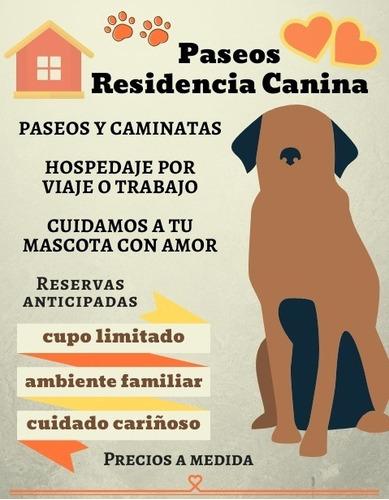 hospedaje canino - guarderia y paseos