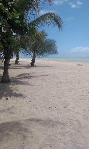 hospedaje frente al mar en la playa de palomino