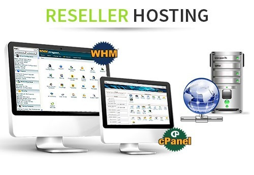 hosting reseller 20 gb linux con cpanel/whm mensual