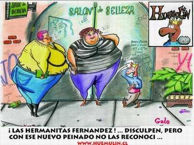 huemulin comics