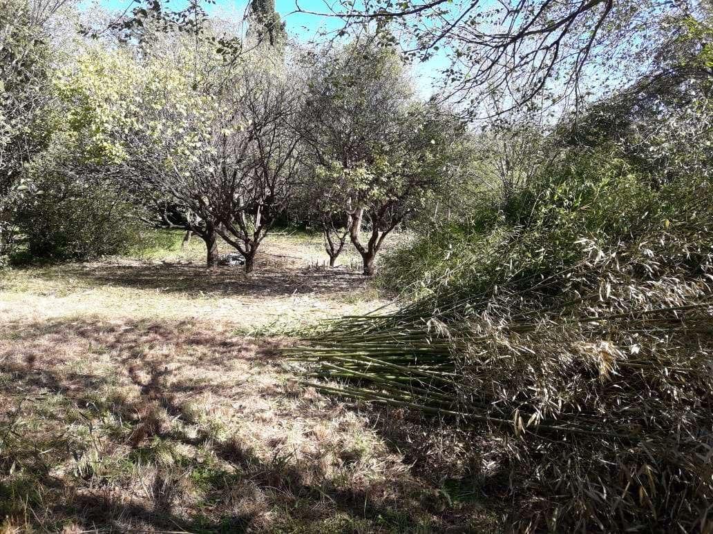 huerta grande lote en villa parque a una cuadra de ruta 38