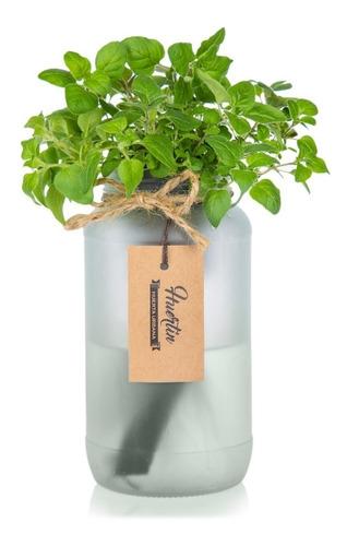 huerta hidroponica con autoriego - hierbas aromaticas.